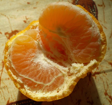Mandarinpp